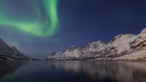 comet_aurora_picture-1