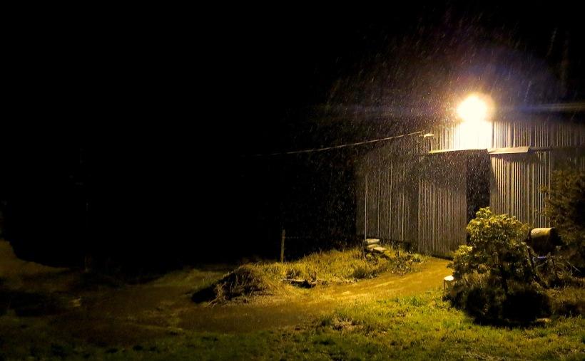 barnyardlight