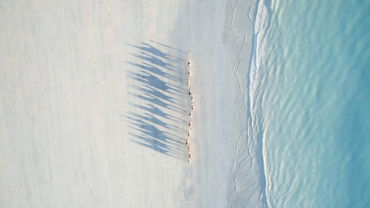 Todd-Kennedy-Cable-Beach-1200x674.jpg