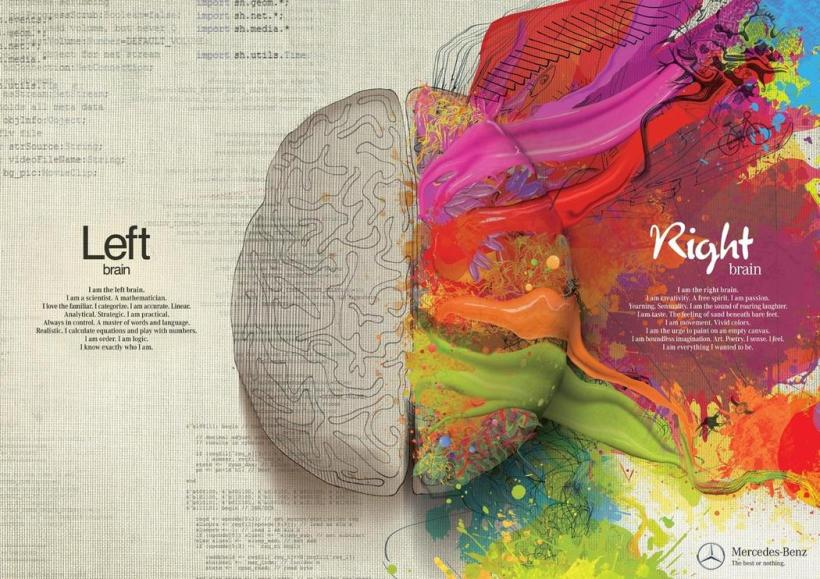 Right brain, left brain